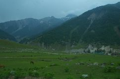 Paisagem de Sonmarg em Kashmir-12 Foto de Stock Royalty Free