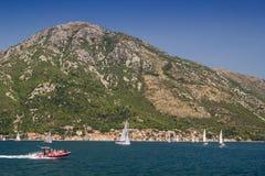 Paisagem de Sunny Mediterranean Montenegro, baía de Kotor imagem de stock royalty free