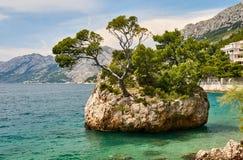 Paisagem de surpresa do dia com a ilha rochosa com pinhos e água clara do mar de adriático na praia, Brela, Makarska riviera, Dal imagens de stock royalty free