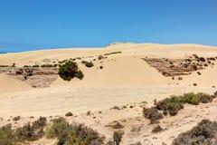 Paisagem de Tamri perto de Imsouane - Marrocos Imagens de Stock
