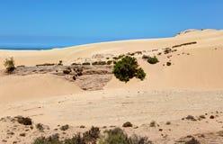 Paisagem de Tamri perto de Imsouane - Marrocos Foto de Stock