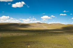 Paisagem de Tibet Fotos de Stock