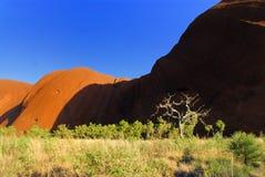 Paisagem de Uluru Imagens de Stock Royalty Free