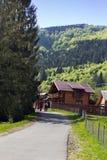 Paisagem de um abeto alto, de casas e de montanhas Fotografia de Stock Royalty Free
