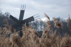 Paisagem de um campo com um moinho de vento Foto de Stock Royalty Free