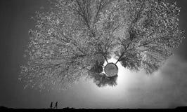 A paisagem de um mundo desconhecido e fantástico chamou 'o planeta pequeno ' fotografia de stock royalty free