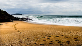 Paisagem de um surfista que olha o oceano Fotografia de Stock Royalty Free