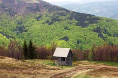 Paisagem de um vale com casa de madeira e de montanhas com abeto-t Fotos de Stock Royalty Free