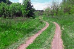 Paisagem de um vale gramíneo com passeio, árvores na floresta Imagens de Stock Royalty Free