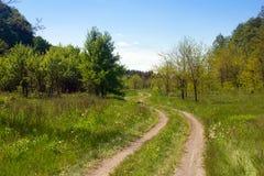 Paisagem de um vale gramíneo com passeio, a floresta e a SK bifurcados Imagens de Stock