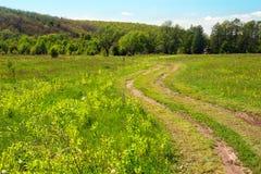 Paisagem de um vale gramíneo com passeio, montes com árvores Fotografia de Stock Royalty Free