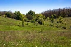 Paisagem de um vale gramíneo, de montes com floresta e de céu Fotografia de Stock