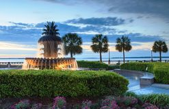 Nascer do sol do SC de Charleston da fonte do abacaxi fotografia de stock