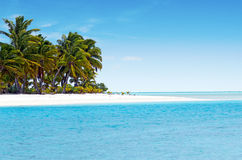 Paisagem de uma ilha do pé no cozinheiro Islands da lagoa de Aitutaki Fotografia de Stock