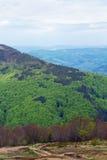Paisagem de uma montanha verde grande com árvores Fotos de Stock