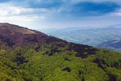 Paisagem de uma montanha verde grande com árvores Fotografia de Stock