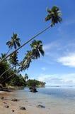 Paisagem de uma praia tropical na península de Savusavu no lev de Vanua Fotografia de Stock Royalty Free