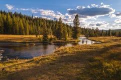 Paisagem de Yellowstone imagem de stock
