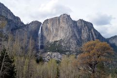 Paisagem de Yosemite Falls, parque nacional de Yosemite Fotos de Stock Royalty Free