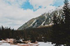Paisagem de Zakopane das montanhas de Tatry foto de stock