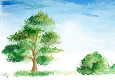 Paisagem desenhada da aguarela ilustração do vetor