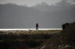Paisagem dinamarquesa e flocos de neve do inverno do litoral Fotos de Stock