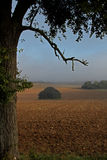Paisagem do amanhecer dos campos e dos prados Fotos de Stock Royalty Free