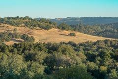 Paisagem do amanhecer no campo, em montanhas e em carvalhos rurais, céu azul imagens de stock royalty free