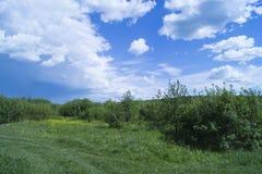 Paisagem do ano no terreno rural Imagem de Stock Royalty Free