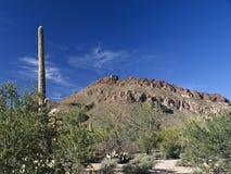 Paisagem do Arizona fotografia de stock royalty free