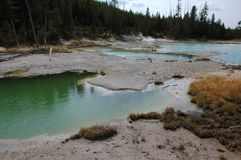 Paisagem do azul de Yellowstone Hot Springs Fotos de Stock