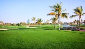 Paisagem do campo de golfe verde Imagens de Stock
