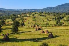 Paisagem do campo em Maramures, Romênia Fotos de Stock Royalty Free