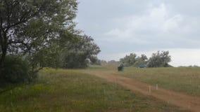 Paisagem do campo no dia chuvoso ventoso do verão filme
