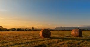 Paisagem do campo Pacotes de feno no campo no por do sol dourado Foto de Stock Royalty Free