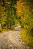 Paisagem do cenário do outono com estrada rural, a floresta colorida, as cercas de madeira e os celeiros do feno em Bucovina imagem de stock