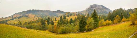 Paisagem do cenário do outono com floresta colorida, as cercas de madeira e os celeiros do feno em Bucovina, Romênia Imagem de Stock