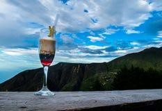Paisagem do cocktail Imagens de Stock Royalty Free
