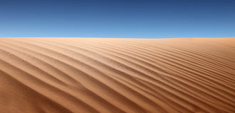 Paisagem do deserto Fotos de Stock Royalty Free