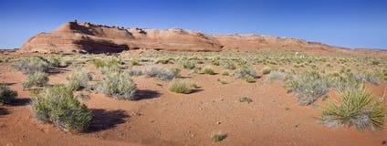 Paisagem do deserto Foto de Stock