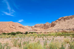 Paisagem do deserto de Atacama fotografia de stock royalty free