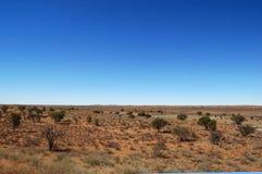 Paisagem do deserto de Kalahari Fotos de Stock Royalty Free