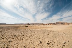 Paisagem do deserto, Egito, Sinai sul imagem de stock royalty free
