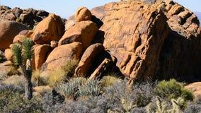 Paisagem do deserto na noite filme