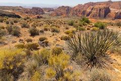 Paisagem do deserto perto de St. George Utah, EUA. imagem de stock