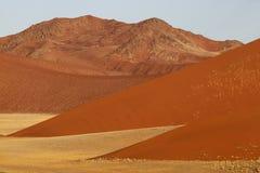 Paisagem do deserto, Sossusvlei, Namíbia Fotografia de Stock Royalty Free