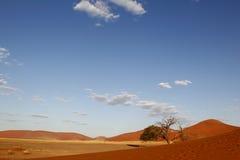 Paisagem do deserto, Sossusvlei, Namíbia Fotos de Stock