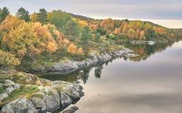 Paisagem do fiorde, floresta misturada no outono Fotos de Stock