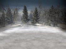 Paisagem do inverno. Fotos de Stock