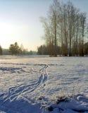 Paisagem do inverno Fotografia de Stock